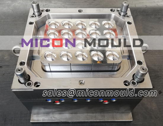egg storage box mould