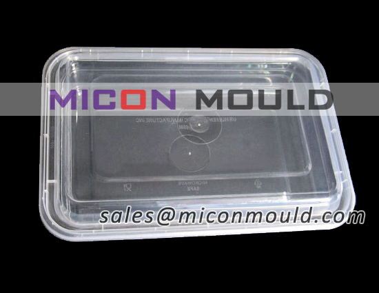 food cantainer mould